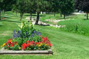 Foxmoor Park