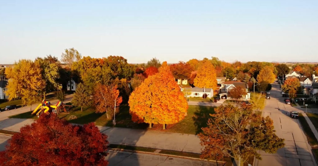 Community-Tree-Care-Workshop-in-Fennimore-October-16